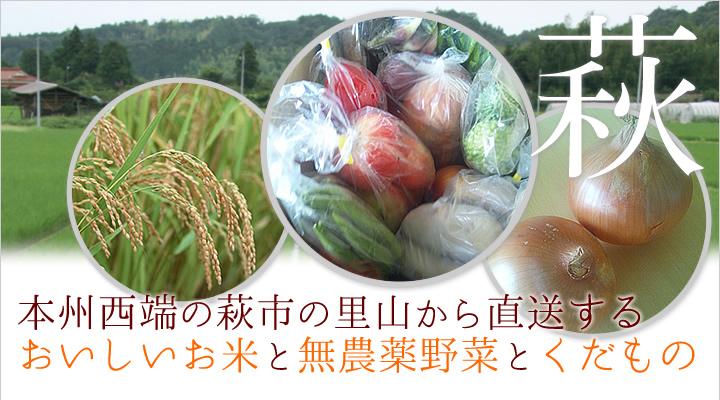 本州西端の萩市の里山から直送する、おいしいお米と無農薬野菜、柑橘、スイートスプリング